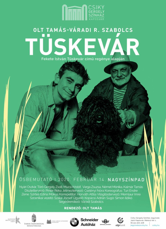 A(z) Tüskevár című előadás plakátja